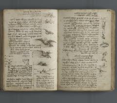 Le vol des oiseaux. Carnet E, ms 2176, f. 43v/44r © Bibliothèque de l'Institut de France